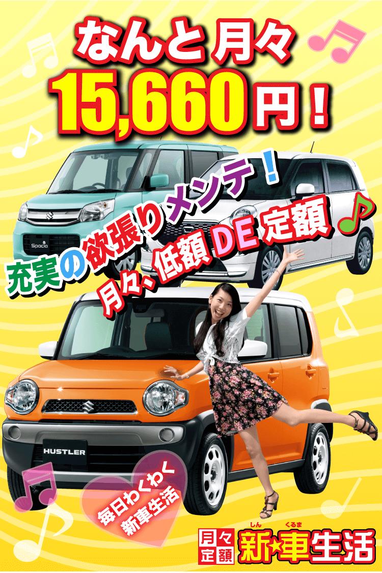 充実のメンテで15660円!月々定額新車生活!